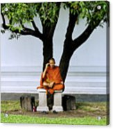 Buddhist Monk Sits Under Tree Acrylic Print by Ray Laskowitz - Printscapes