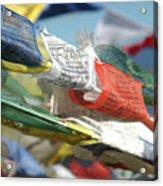Buddhist Prayer Flags Acrylic Print