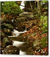 Buff Creek Falls Acrylic Print