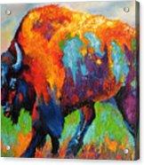 Buffalo On Weed Acrylic Print