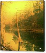 Buffalo River In Gold Acrylic Print