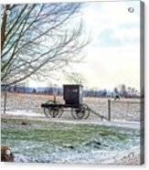 Buggy Alone In Winter Acrylic Print