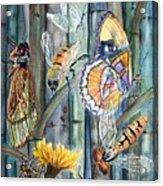 Bugs N Bamboo Acrylic Print