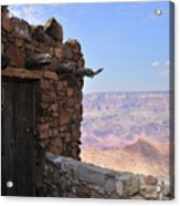 Building On The Grand Canyon Ridge Acrylic Print