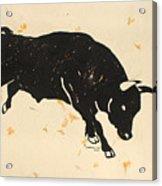 Bull 1 Acrylic Print