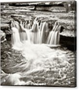 Bull Creek Water Run Acrylic Print by Lisa  Spencer
