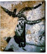 Bull: Lascaux, France Acrylic Print