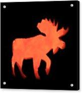 Bull Moose Pumpkin Acrylic Print