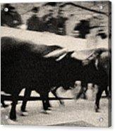 Bull Run 3 Acrylic Print