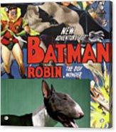 Bull Terrier Art Canvas Print - Batman Movie Poster Acrylic Print