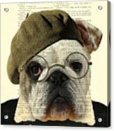Bulldog Portrait, Animals In Clothes Acrylic Print
