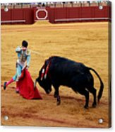 Bullfighting 21 Acrylic Print