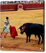 Bullfighting 22 Acrylic Print