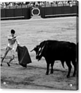 Bullfighting 22b Acrylic Print