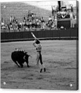 Bullfighting 36b Acrylic Print