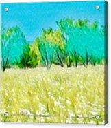 Texas Bull Nettle Acrylic Print