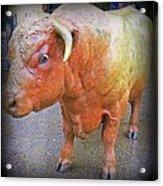 Bulls Eye Acrylic Print by Randall Weidner