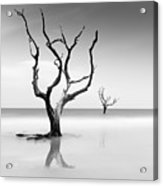 Boneyard Beach Xv Acrylic Print