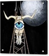 Bullseye Acrylic Print