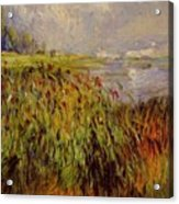 Bulrushes On The Banks Of The Seine 1874 Acrylic Print