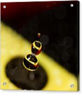 Bumble Bee Acrylic Print by Rebecca Cozart