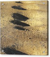 Bumps In The Road Acrylic Print