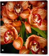Bunches Of Flowers I Acrylic Print