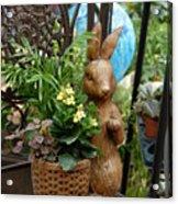 Bunny 63 Acrylic Print