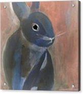 Bunny A Acrylic Print