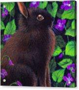 Bunny And Violets Acrylic Print