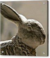 Bunny Acrylic Print