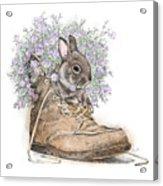 Bunny In Boot Acrylic Print