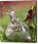 Bunny In The Lilies Acrylic Print
