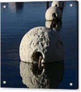 Buoy Upfront Acrylic Print