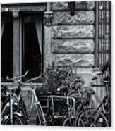 Burgandy Blur Acrylic Print