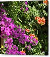 Burgazada Island Flower Color Acrylic Print