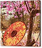 Burmese Spring Acrylic Print