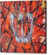 Burning Bush Acrylic Print by Mordecai Colodner