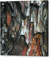 Burnt Tree Abstract Acrylic Print