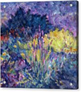 Burst Of Color-last Night In Monets Gardens Acrylic Print