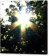 Burst Of Sunlight Acrylic Print