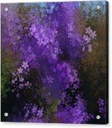 Bursting Blooms Acrylic Print