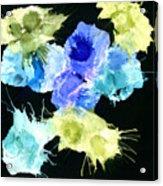 Bursting Comets 2017 - Blue And Green On Black Acrylic Print