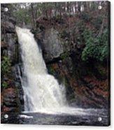 Bushkill Falls Acrylic Print