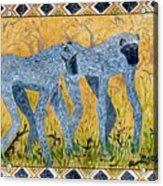 Bushveld Bliss Acrylic Print