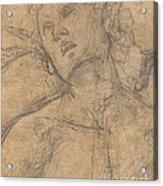 Bust Of A Youth Looking Upward [recto] Acrylic Print