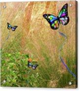Buterflies Dream Acrylic Print