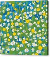 Buttercups And Daisies Acrylic Print