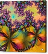Butterflies 1 Acrylic Print