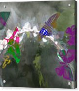 Butterflies And Dew Acrylic Print
